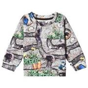 Molo Dag Sweatshirt Moles 68 cm (4-6 mdr)