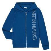Sweatshirts Calvin Klein Jeans  IB0IB00668-C5G